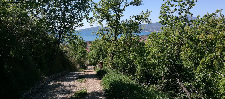 percorso trekking ad Ascea, particolare del sentiero dell'aurella il cilentano cilento