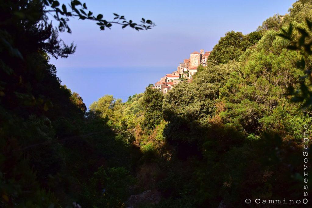sentiero del castelluccio Pisciotta il cilentano cilento