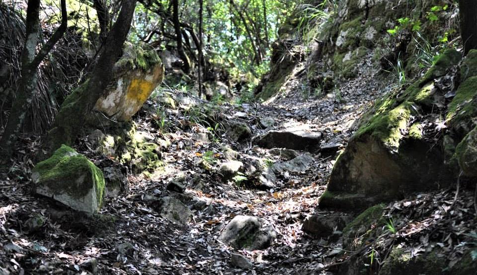 sentiero dei cavalieri di malta treking rodio san mauro la bruca castelluccio pisciotta il cilentano cilento 2