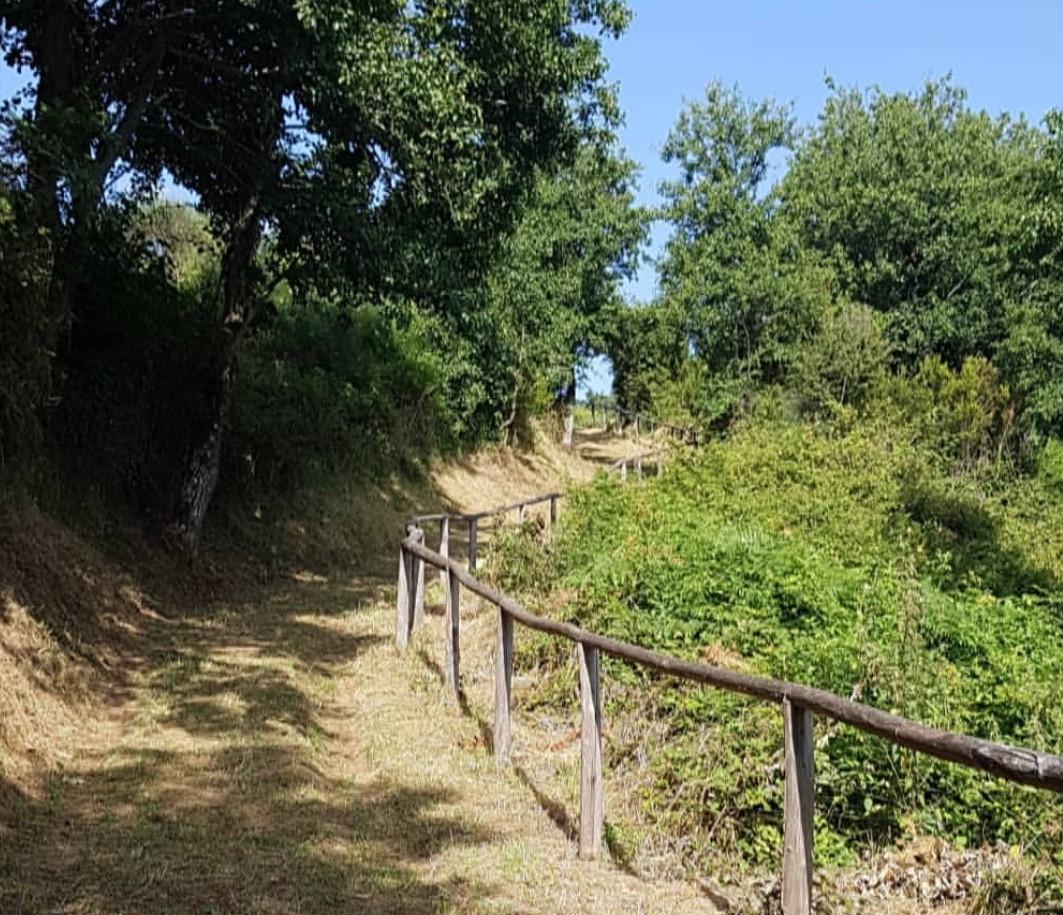 sentiero-trekking-catona-verso-il-monte-del-carmelo-il-cilentano-cilento
