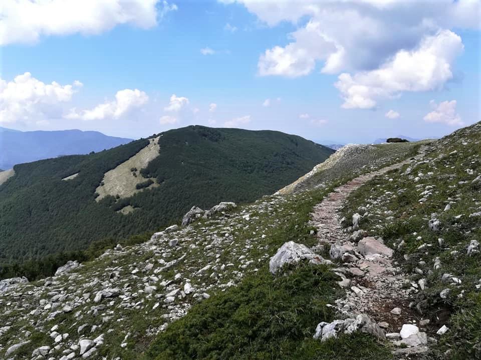 sentiero-trekking-san-mauro-la-bruca-rodio-pisciotta-il-cilentano-cilento