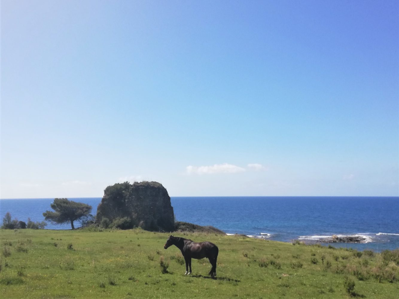 La spiaggia di torre caleo ad Acciaroli cilento il cilentano.jpg