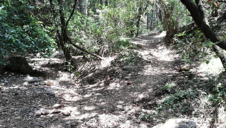 svolta cala bianca sentiero della masseta e infreschi il cilentano cilento.jpg
