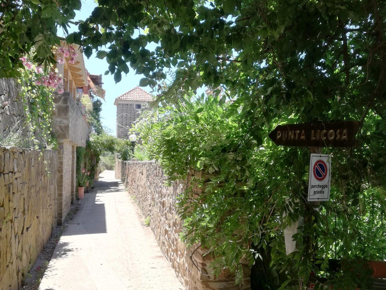 Sentiero per punta licosa, da San Marco di Castellabate alla sirena Leucosia.jpg