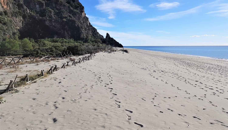 le dune della spiaggia del mingardo (1)