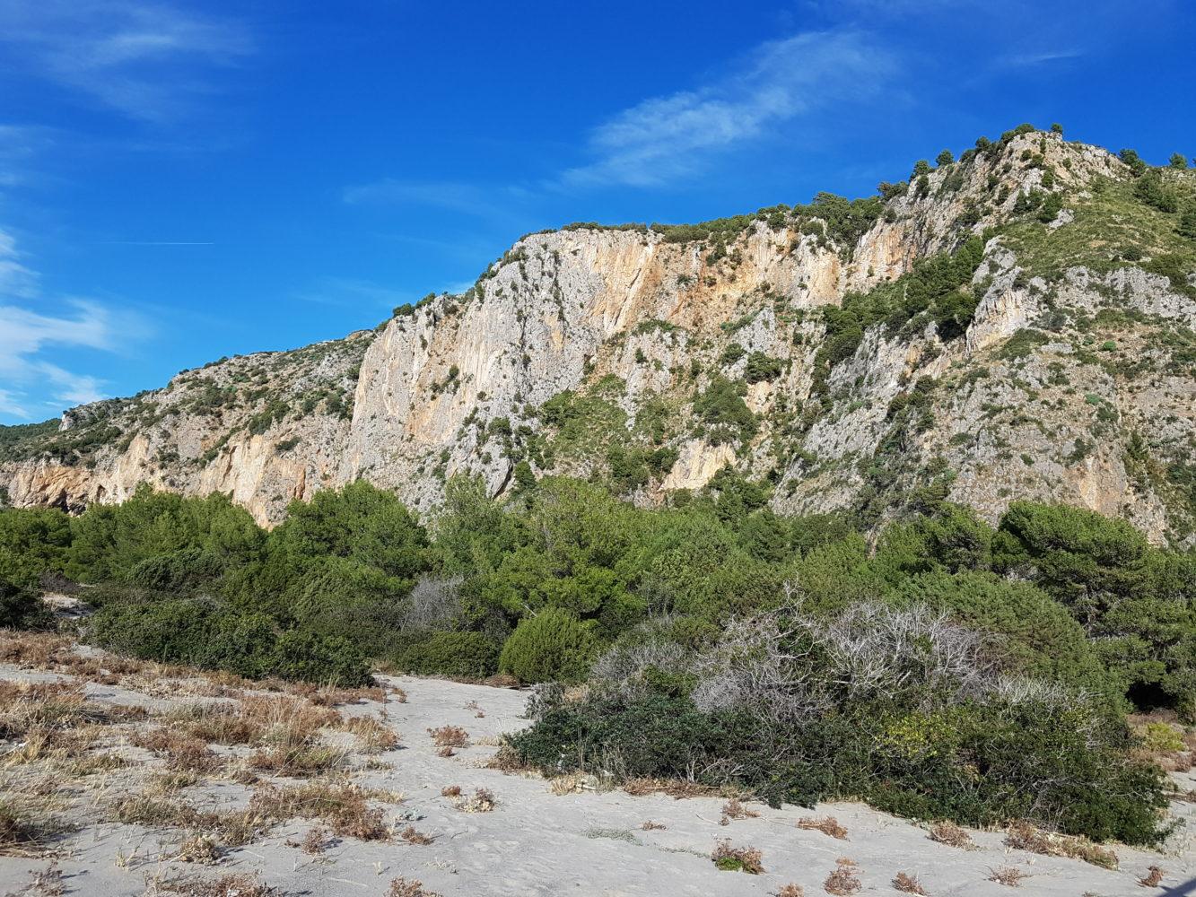 le dune della spiaggia del mingardo (3)