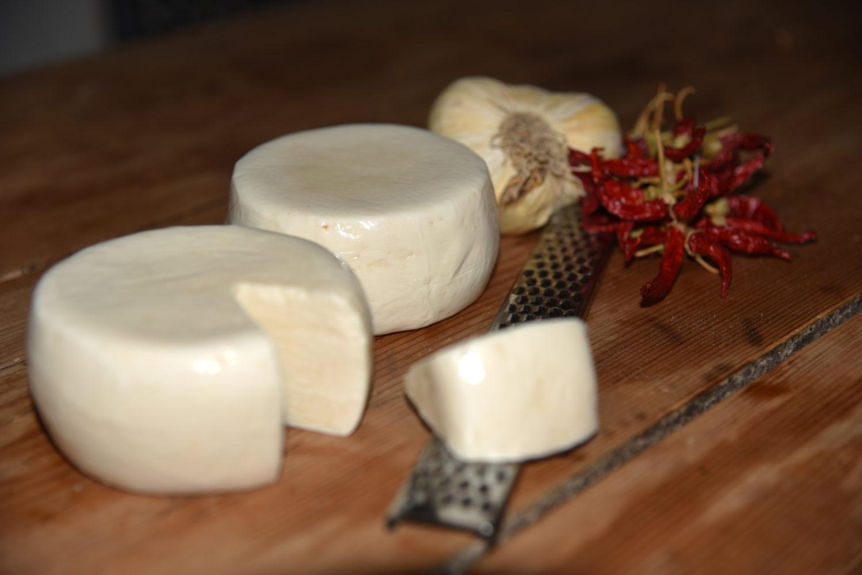 Cacioricotta del Cilento formaggio di capra cilentana