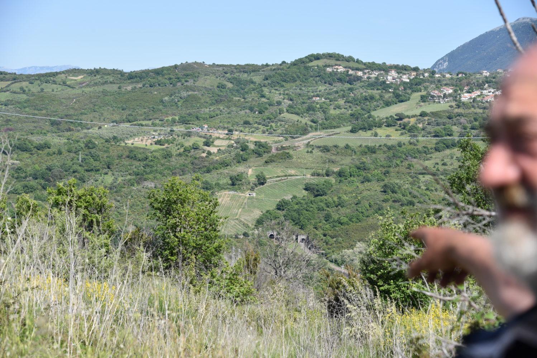 Mario Notaroberto indica e osserva le vigne della fattoria albamarina (1)
