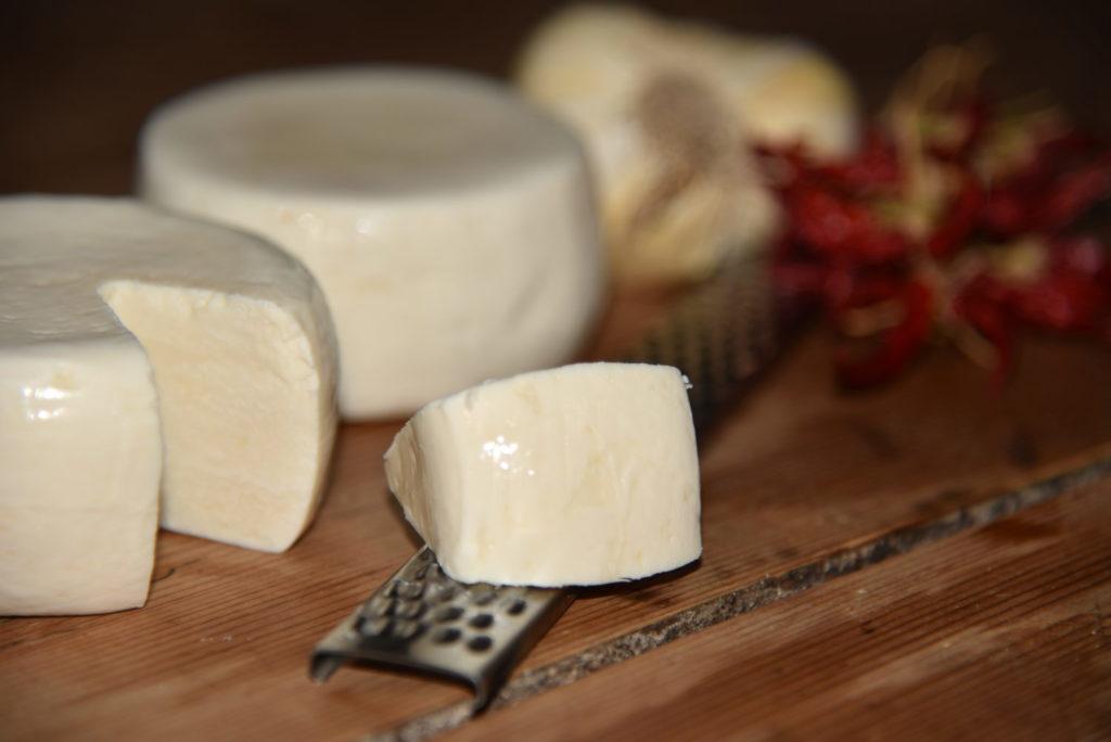 il Cilentano Shop e-commerce del cilento formaggio di capra