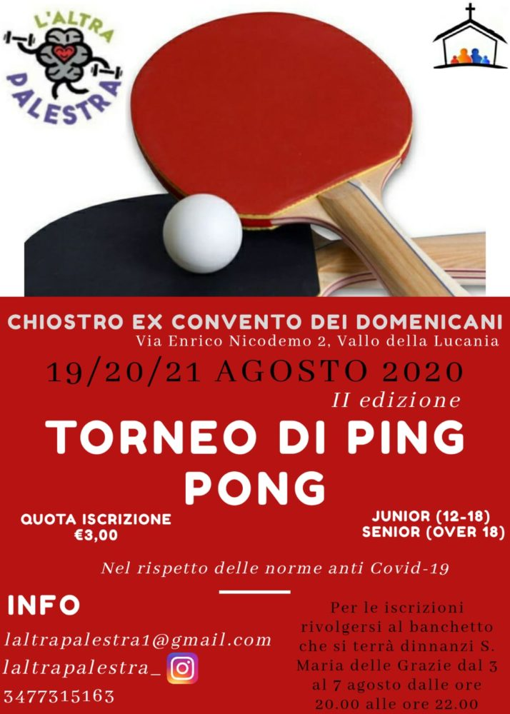 Torneo di Ping Pong a Vallo della Lucania (2)