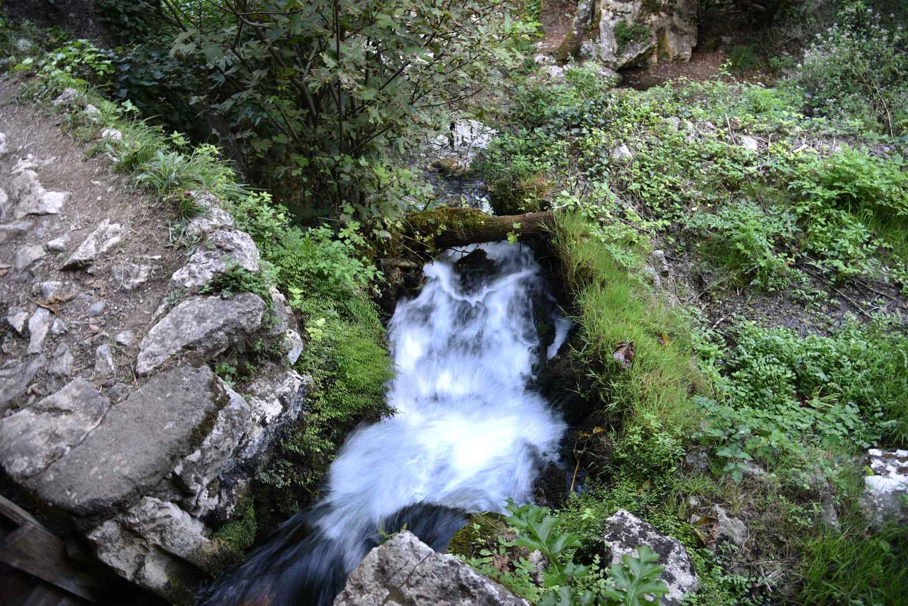 grotte-del-bussento-mulino-di-morigerati-oasi-wwf