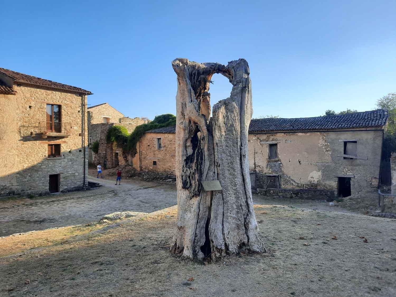 un-albero-per-vassallo